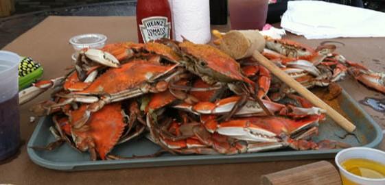 mays_crabs